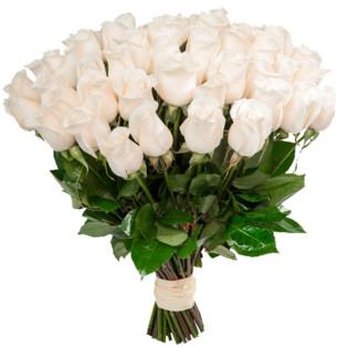 Розы Голландия белые