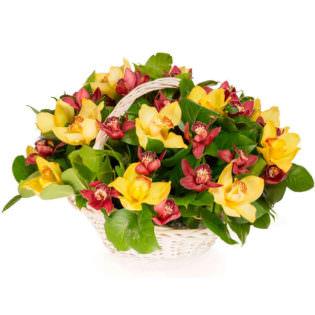 Цветы в корзинке «Орхидеи микс»